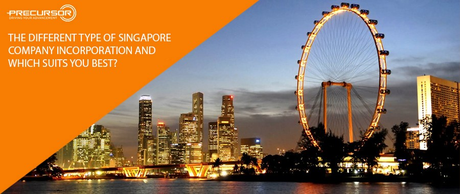 The different type of Singapore Company incorporation and which suits you best?