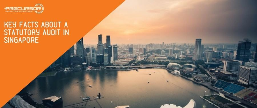 Key facts about a Statutory Audit in Singapore