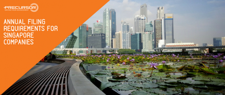 Annual Filing requirements for Singapore Companies